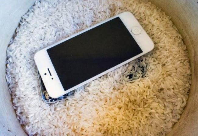 IPhone laissé tomber dans les toilettes ou l'eau?  Voici comment le sauvegarder  – Iphonix.fr