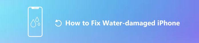 L'iPhone est tombé dans l'eau?  Voici comment réparer un iPhone endommagé par l'eau