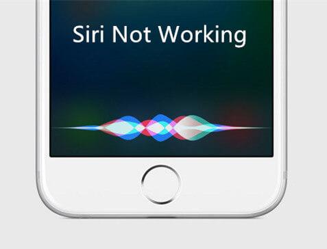 Top 14 des méthodes pour réparer Siri ne fonctionne pas sur iPhone 7/7 Plus